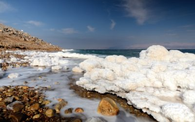 minerals in the Dead Sea